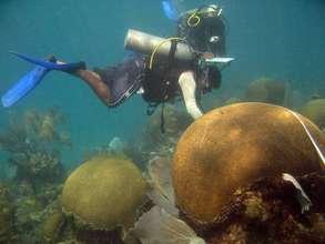 Fishermen monitoring biodiversity