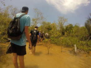 Making our way through the mangroves