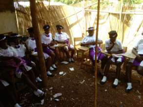 School Girls Theraputic Group