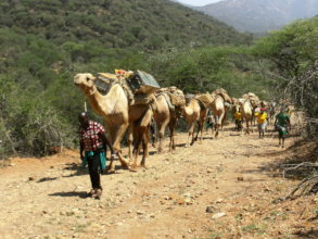 CHAT Camel Mobile going into arid areas