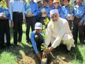 Teacher helping student in planting a tree
