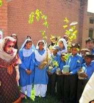 Students with their trees