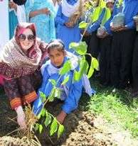 Plantation is going on