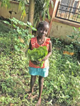 Annie harvesting Greens with Hope Opens Doors