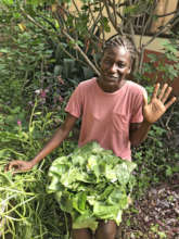 Harvesting Greens with Hope Opens Doors