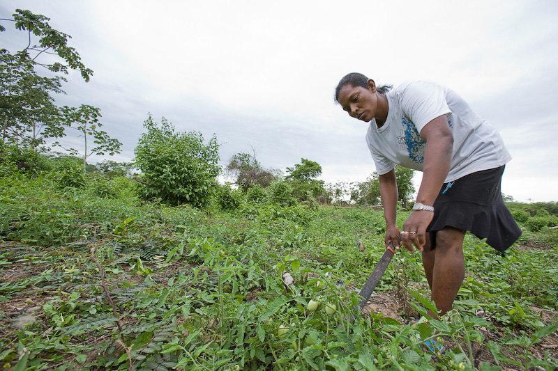 Harvesting Hope for Indigenous Women in Nicaragua