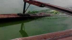 Talim Island Post-Typhoon Algae