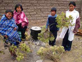 Children collecting firewood