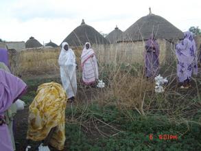 Copyright Zenab for Women in Development