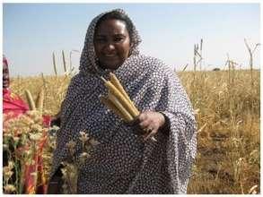 Fatima Ahmed of Zenab for Women in Development