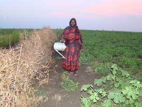 A Women Farmers Union member watering her crops