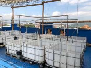 Acuaponic system-fish tanks