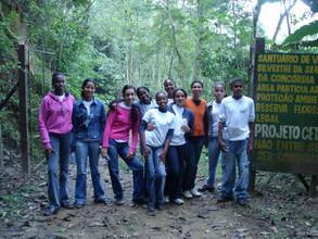2008 trees plantation