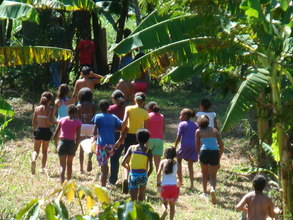 A Day in the Forest ecological tour