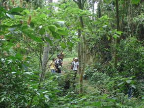 Most of the students never visited a forest.