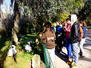 Participants receiving instruction from zoo staff