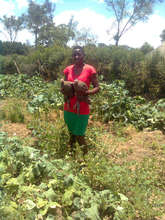 Gardens for AIDS orphans