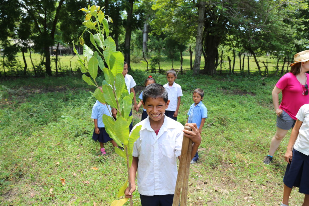 100,000 Fruit Trees for El Salvador