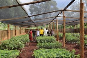 FTPF's partner nursery outside of Jinja, Uganda