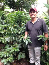 Don Enrique at the coffee farm in Chachagua