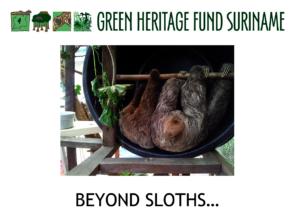 Beyond sloths...