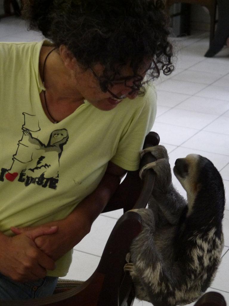 Sanctuary helps Suriname's sloths back to jungle
