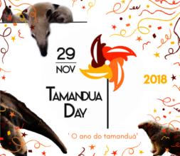 International Anteater Day on the 29th of November
