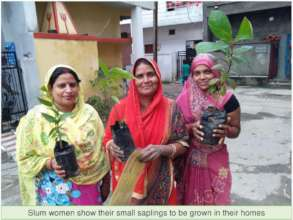 Slum women showing small plants to be grown