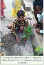 A slum youth plants a tree in his neighborhood