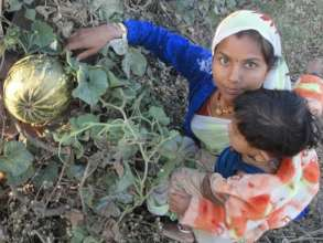A woman shows her grown pumpkin with her baby