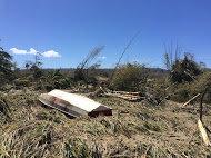 Response to Tropical Cyclone Pam in Vanuatu
