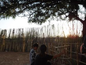 Sunset Ruth's Garden