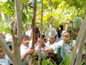 Schoolyard garden and forest at Salih Yusah ES
