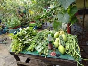 Garden crops at Salih Yusah ES