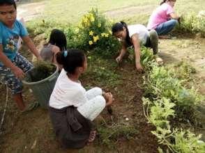 School Garden at Angub Elementary