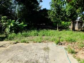 Our future organic garden.