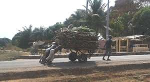 Women and Girls pushing a 2 wheel carrier of woods