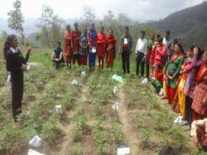 Agricultural Training