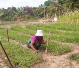 Thun Pun working hard to increase productivity