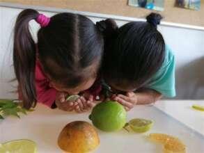 Sponsor 530 Children in Need Through Education