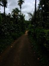 Thin Tar Road to the hamlet.JPG