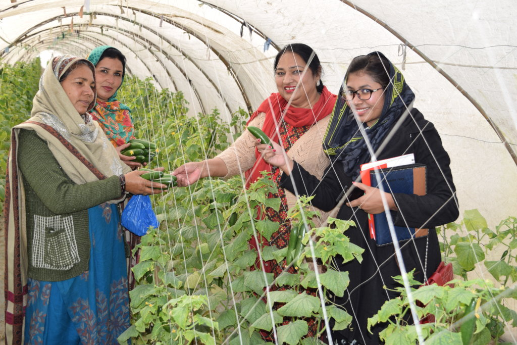 Vegetable farming for poor women of 10 rural areas