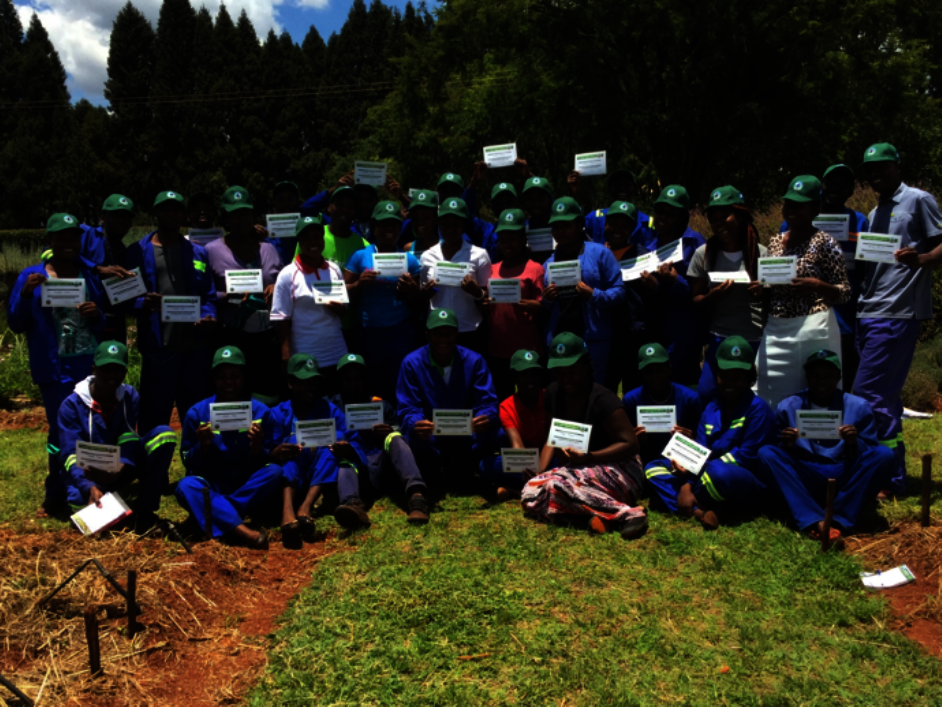Train Primary Teachers in Conservation Agriculture