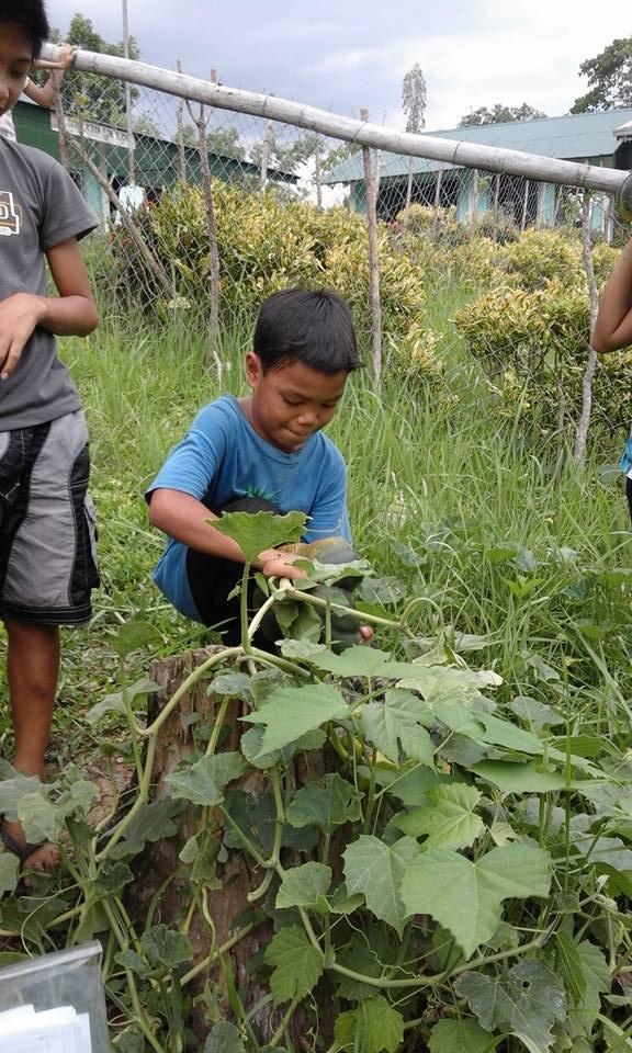 Clean Water and Hygiene for 175 Filipino Children