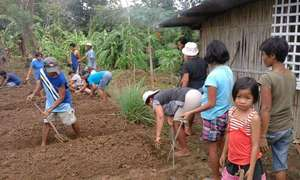 PTA parents create school garden waiting for rain