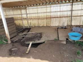 The kennels and fences are quite dilapidated.