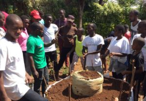 Students learning to grow kitchen gardens