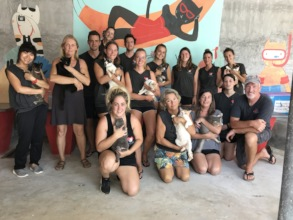 New managers and volunteers in Kitty City