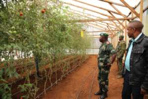 General Ilunga visiting the tomato Greenhouse