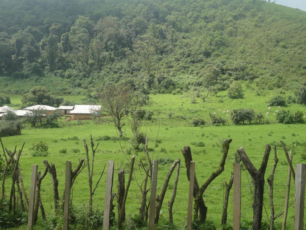 Provide Health Care Services to Fulani Community